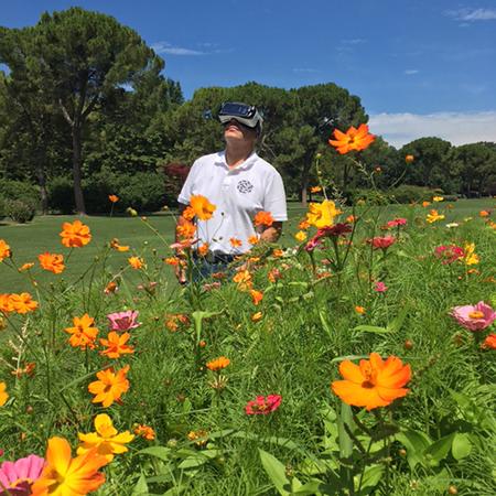 La fioritura del parco sigurtà a 360 gradi